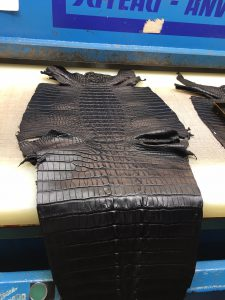Preparing exotic leathers for cutting